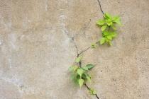 power-persistence-career